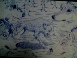 Wolves by ShadowJMC