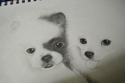 my unfinished puppy drawing. by kittycat727