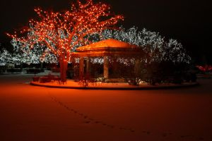 Red Winter Lights by whitedragoneyes