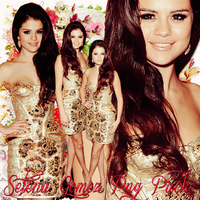 Pack png 207 Selena Gomez png by MichelyResources
