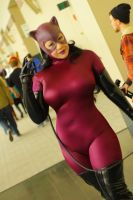 Anime Boston 2014 - Catwoman by VideoGameStupid