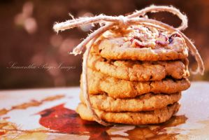 Give thanks for cookies by SamanthaPaigeImages