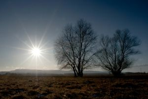 winter sun by szorny-stock