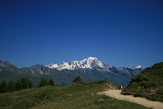 French Alps by alien-sid