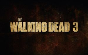 the walking dead wallpaper by twilight-nexus