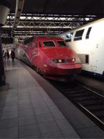 Thalys at Brussels Midi by longrider1952