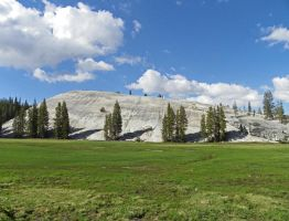 Tuolumne Meadows by Synaptica