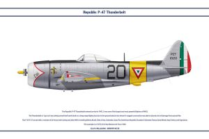 P-47 Mexico 1 by WS-Clave
