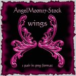 Wings by AngelMoon17