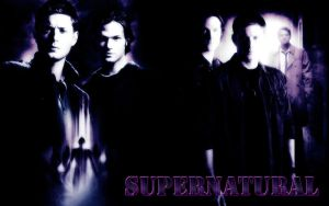 Supernatural Season 5 by Lauren452
