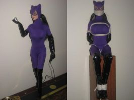 DC Damsel Bios: Catwoman by alleghany71