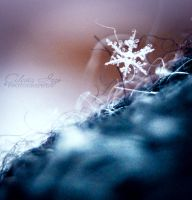 My cold winter. by Alessia-Izzo