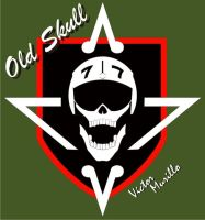 Old Skull by VyToR