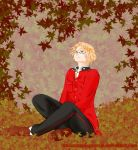 APH: Canada maple leaf by undercreed-genesis