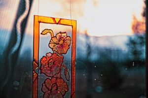 Window by keillly