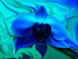 I LOVE BLUE by Topas2012