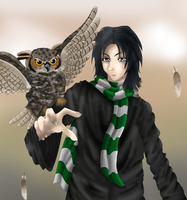 The Half-Blood Prince by Becca-at-the-ball