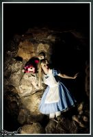 Alice in the dark by clefchan