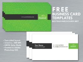 Simple Business Card Template in Green-Black Theme by fiftyfivepixels