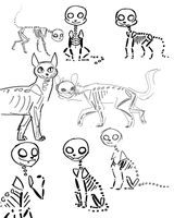 cat skelies by Nifty-senpai