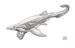 Helicoprion by aaronjohngregory