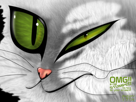 OMG! a cat STUMPED his face on your screen by OSuKaRuArT