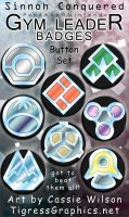 Button Set: Sinnoh Gym Set by Shalie
