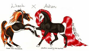 Breeding pic Lhach X Aidien by moonfeather