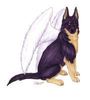 Winged German Shepherd by Korrok