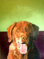 Image Dog portrait by Witchartist