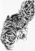 Desmond in Black Tiger Form by Stonegate