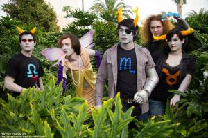 Genderbent Homestuck Group by Ceciliabot