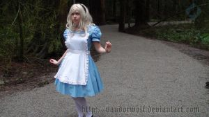 Alice in Wonderland: Which Way by VandorWolf