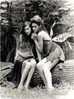Forest Fairies by orlarose