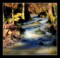 Streaming Water 012 by ximocampo