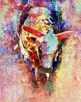 Rodeo Western Series #3 by crypticfragments