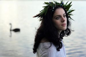Swan song by fae-photography