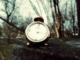 Wasted Time by Midnight-Ivory