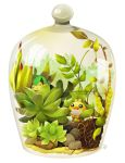 Terrarium Series I by circus-usagi