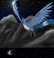 Night Flyer by moltres93