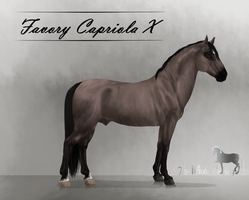 Favory Capriola X ref by The-White-Cottage