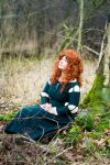 Merida - Home in the forest by Another-Rose