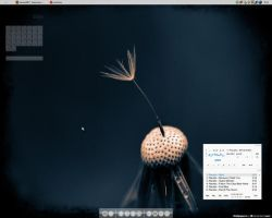 Desktop by earthly-muse