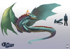 Caldyra Competition by Paganflow