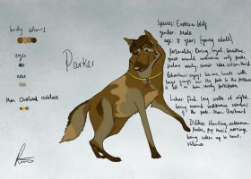 Parker character design reference by AnimationAmmeter