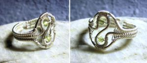 Eternia - Adjustable Ring by Carmabal