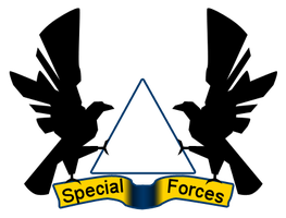 Band3d Special Forces badge by Terrarist
