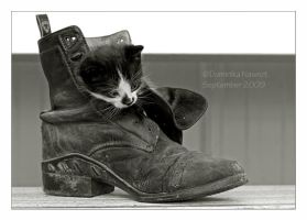 Puss in Boot by Goodbye-kitty975