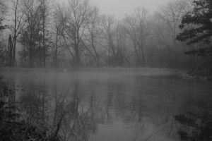 Covered by fog by Murdoc3