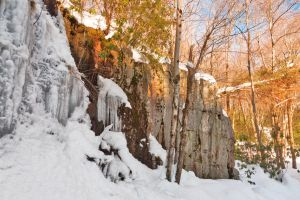 Winter Hawk Rockscape by somadjinn